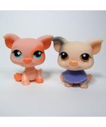 Littlest Pet Shop # 259 PIG & Bib, 622 PIG Polka Dot Ears Flower Eyes Fa... - $11.00