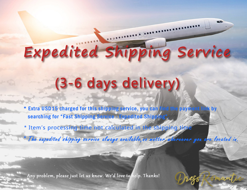 Fast Shipping Service - Expedited Shipping (Worldwide)  -Custom Additional Cost