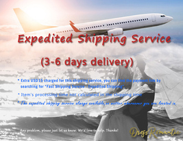 Fast Shipping Service - Expedited Shipping (Worldwide)  -Custom Additional Cost image 1