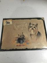Yorkshire Terrier Fine Art Wall Print PLEASE READ DESCRIPTION - $10.93