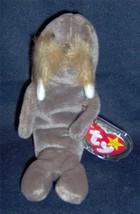 '97~TY ORIG Beanie Baby~JOLLY the WALRUS~5TH Gen HT~6th Gen TT~MWMT~#408... - $2.88