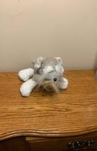 Schnauzer dog webkinz plush no code - $7.60