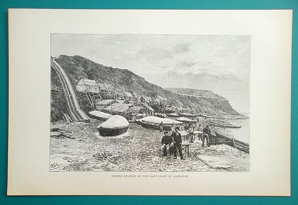 CANADA Labrador Missionary Fishing Station - 1890s Antique Print