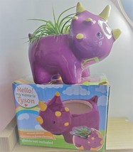 "Live Air Plant in Dinosaur Animal Planter, 5"" purple glazed ceramic pot, Tyson image 5"
