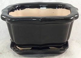 Bonsai Tree Pot black 6 Inch Bonsai Pots with Trays- unique from Jmbamboo - €17,76 EUR