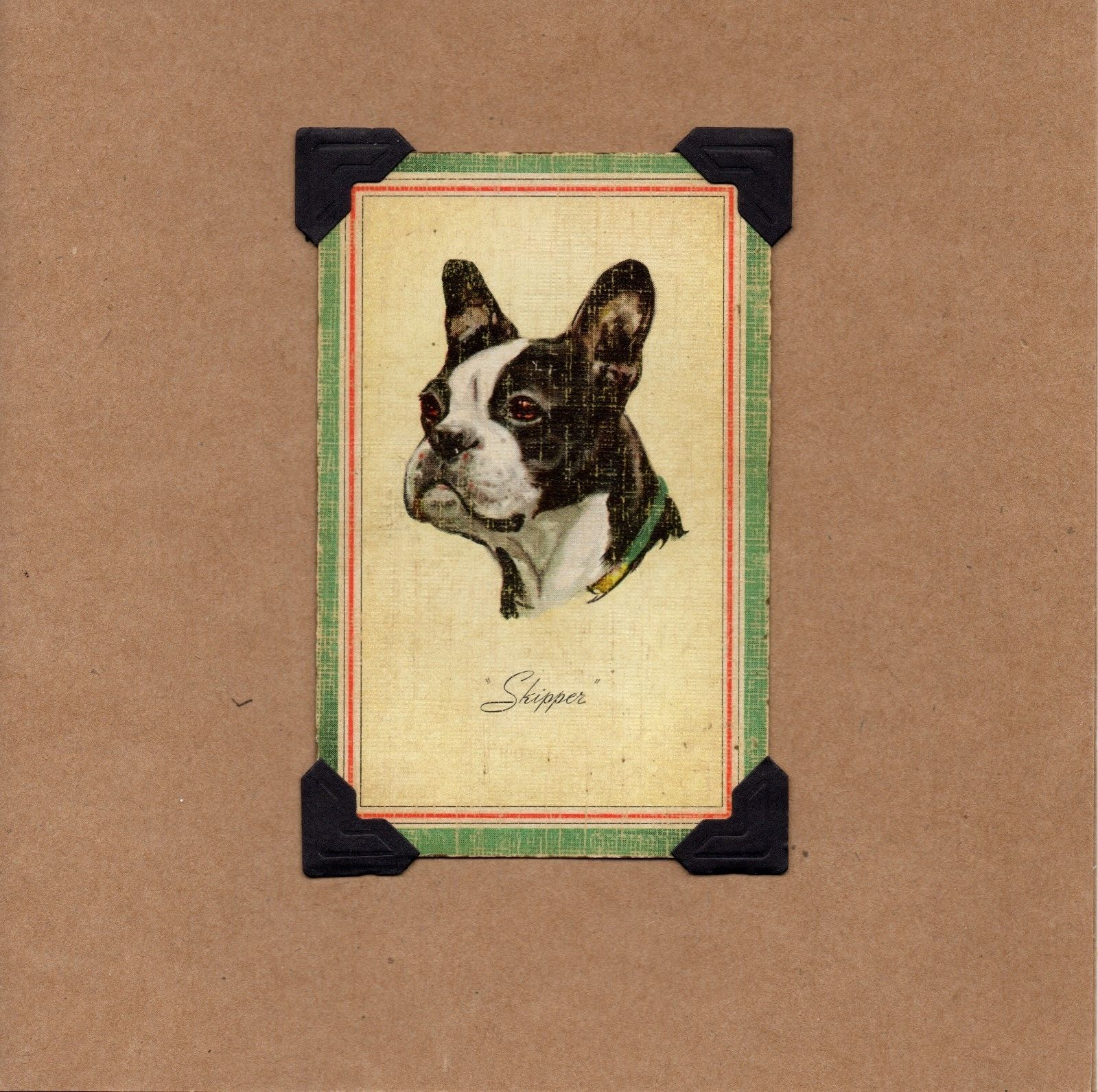 NEW! (6) Upcycled Boston Terrier Birthday/Blank Cards-From Vintage Playing Cards