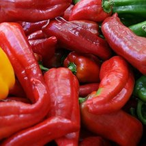 25 Seeds of Corno Di Toro Pepper / Capsicum annuum - $13.86