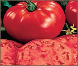 SHIP From US, 100 Seeds Beefsteak Tomato Seeds, DIY Healthy Vegetable AM - $33.99