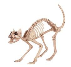 Crazy Bonez Skeleton Cat - £21.92 GBP