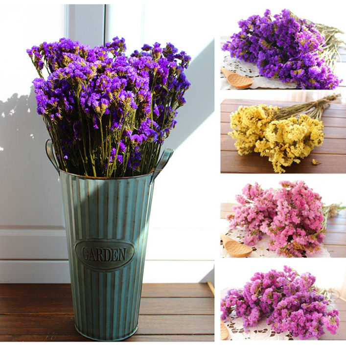 Atural dried flower myosotis sylvatica bouquet home decoration flowers from yunnan free shipping