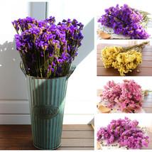 Denisfen 1 pack Dried Flower Bouquet Home Decoration - $37.95
