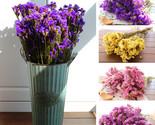Lower myosotis sylvatica bouquet home decoration flowers from yunnan free shipping thumb155 crop