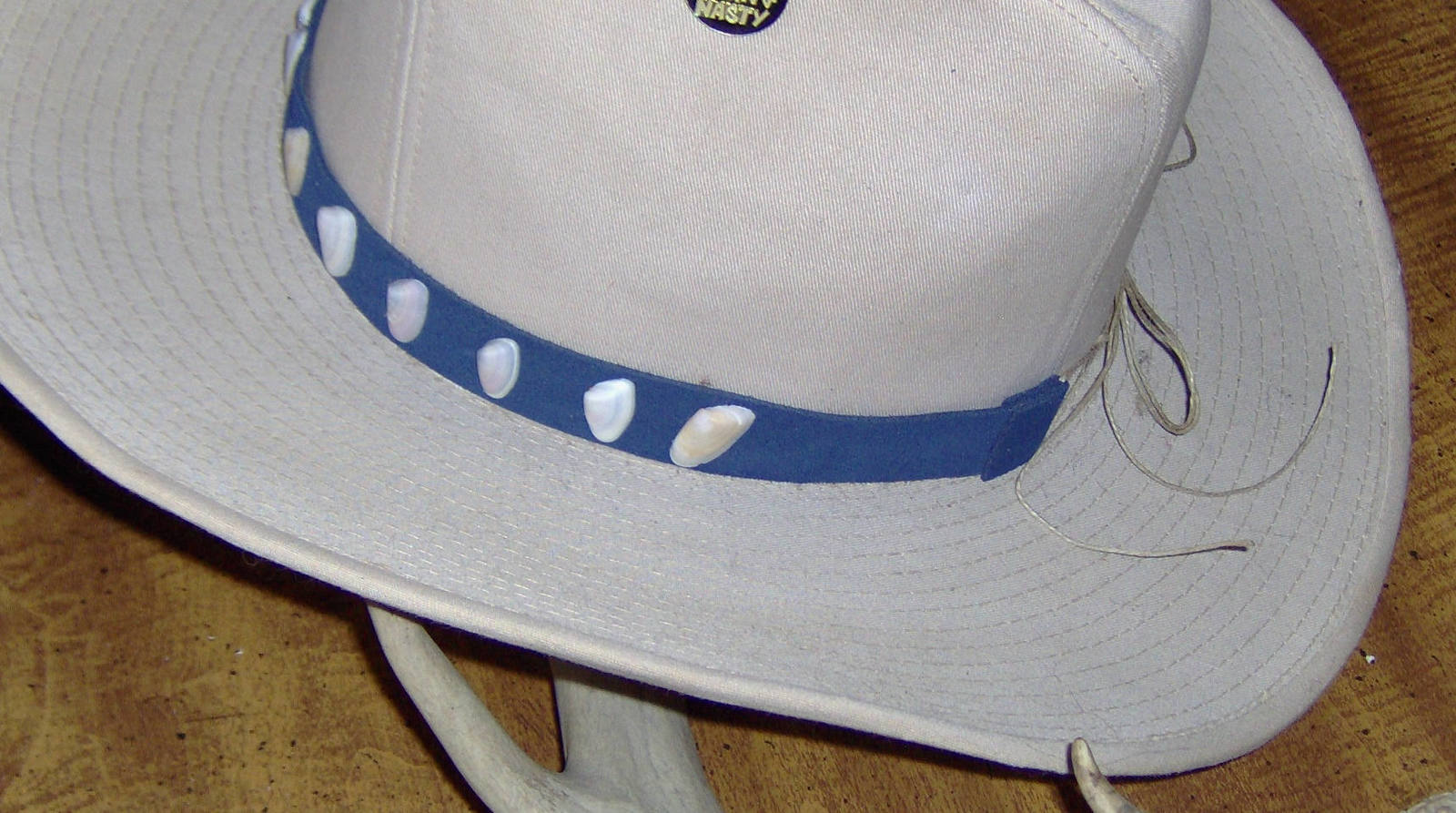 Custom Made Coquina Shell Hat-Band with  Genuine Blue Suede Leather Band