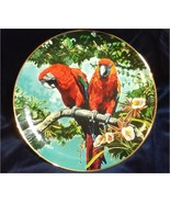 Scarlet Macaws Parrots Porcelain Plate Collectible Royal Cornwall Exotic... - $19.99