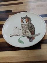 Hand-painted Owl Plate (Goebel-Porzellanfabrick 1979, West Germany) - $21.00