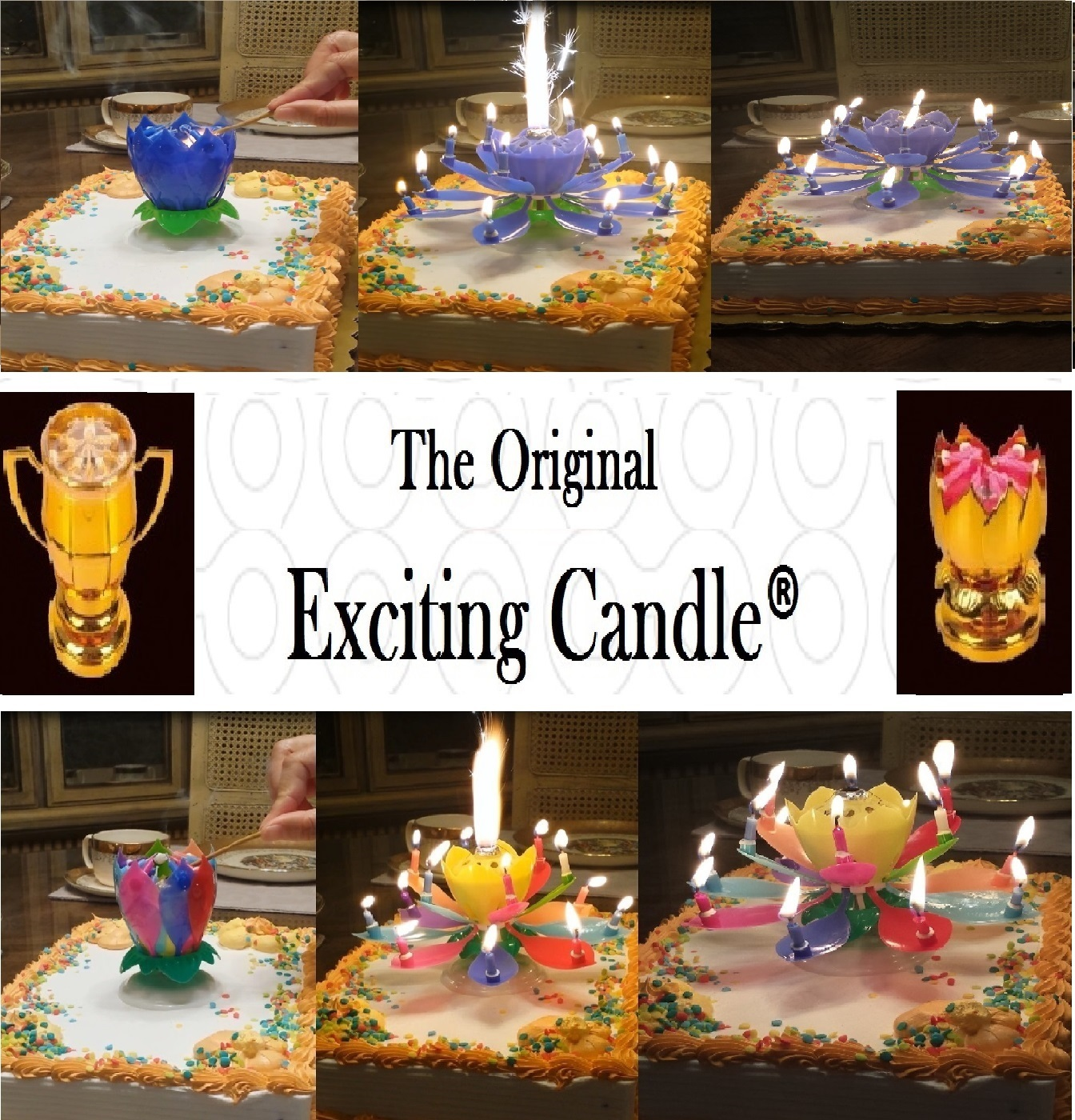 1 Rainbow + 1 Blue  Amazing Lotus Flower Music Happy Birthday EXCITING CANDLE