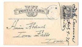 UX5 Dubuque Iowa 1876 Blue Fancy Cork Cancel Wedges Postal Card  - $4.99