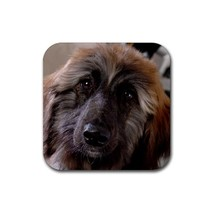 Cute Afghan Hound Puppy Puppies Dogs Pet Animal (Square) Rubber Coaster - $2.99
