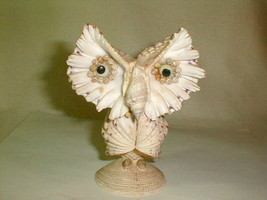 "Owl sea shell art figure sculpture 6"" really cool looking folk art - $25.00"