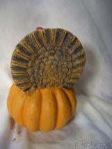 Bethany Lowe Thanksgiving Turkey on a Pumpkin no. TL8746 image 3