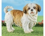 Shih Tzu Outdoor Resin Statue Figure (col) J7