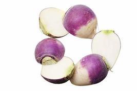 Sow No GMO Turnip Purple Top White Globe Non GMO Heirloom Root/Greens Vegetable  - $7.69