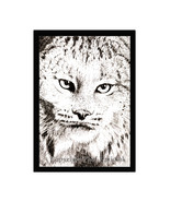 Canadian Lynx Pen and Ink Print - $24.00