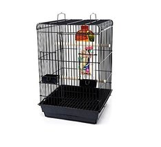 Bird Life Penn Plax Starter Kit Cage with Accessories for Small Parrots - £76.53 GBP