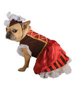 Pirate Girl Big Dog Costume - $32.95+