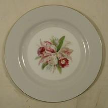Noritake 5049 Vintage Salad Plate 7 1/2in China Gold Rim - $15.63