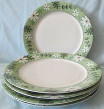 Studio Nova Country Chintz Y2406 Dinner Plates set of 5 - $34.54