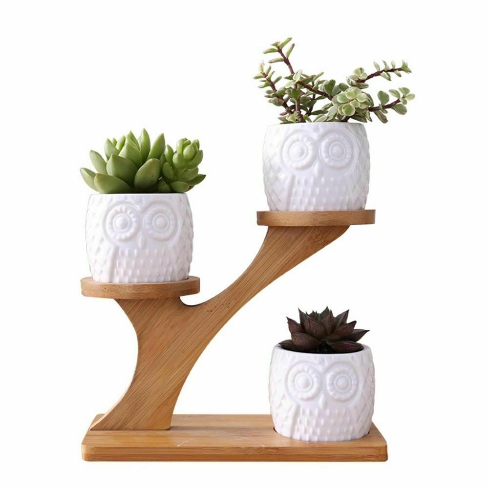 Primary image for Owl Plant Pot Treetop Shape Holder Ceramic Flowers Plants Pots With Shelf Bamboo