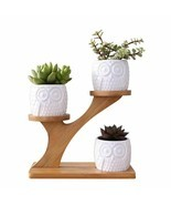 Owl Plant Pot Treetop Shape Holder Ceramic Flowers Plants Pots With Shel... - £23.48 GBP