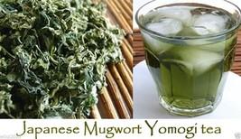 Japanese Mugwort Seeds-YOMOGI - Artemisia princeps, 500 Heirloom seeds - $1.93