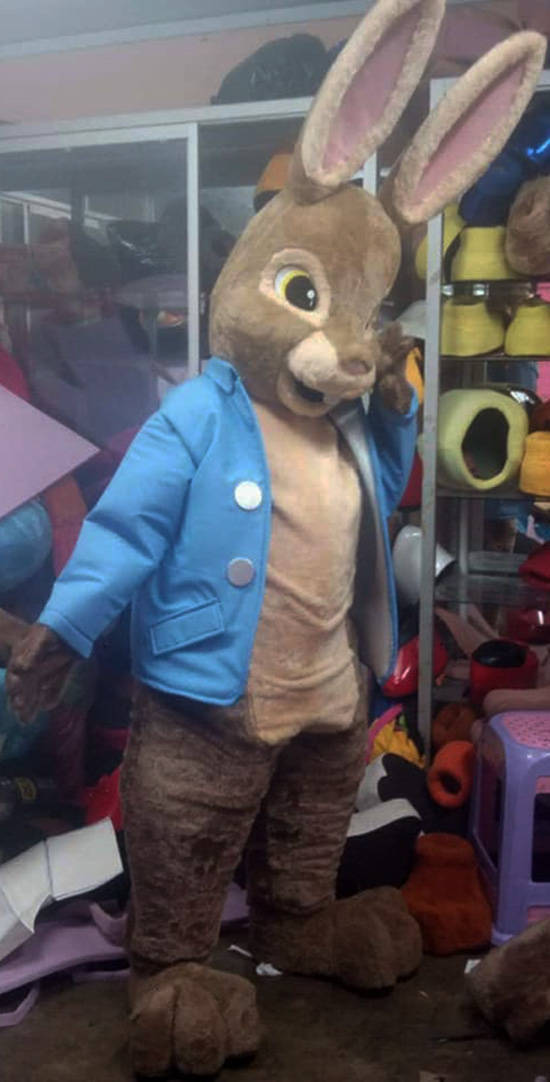 Peter Rabbit Mascot Costume Adult Rabbit Costume For Sale