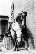 Lee Marvin Drunk On Horse Cat Ballou Classic 18x24 Poster - $23.99