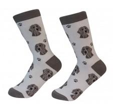 Weimaraner  Socks Unisex Dog Cotton/Poly One size fits most - $11.99