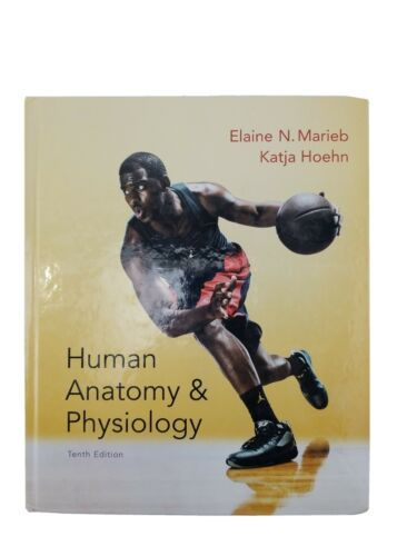 Primary image for Human Anatomy & Physiology Hoehn & Marieb, Hardcover Tenth Edition 9780321927040