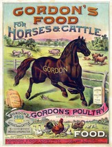 9488.Decoration Poster.Room Wall art.Home decor.Farm Cattle poultry hors... - $11.29+