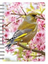 Green Finch 3D Notebook,  great birthday gift - £3.97 GBP