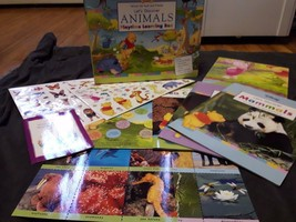 Disney Winnie The Pooh Let's Discover Animals Playtime Learning Box Book... - $16.99