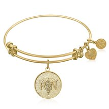 Expandable Bangle in Yellow Tone Brass with Registered Nurse Care Compas... - $40.64 CAD+