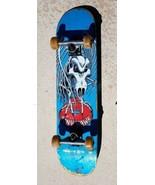 Tony Hawk Skateboard  - $90.00