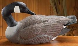 Canada Goose Preening Decoy Galatas Limited Edition Lodge Den Home Decor... - $178.15