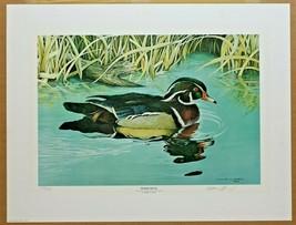 "William C. Morris 1980 Art Print Wood Duck Signed 27.5"" x 21""  Ltd. Ed. ... - $39.59"