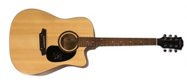 Carrie Underwood Autographed Hand Signed Acoustic Electric Guitar w/COA Country - $749.99