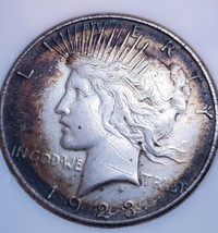 1923  PEACE SILVER DOLLAR OLD NATURAL PATINA*  . 427 - $53.90