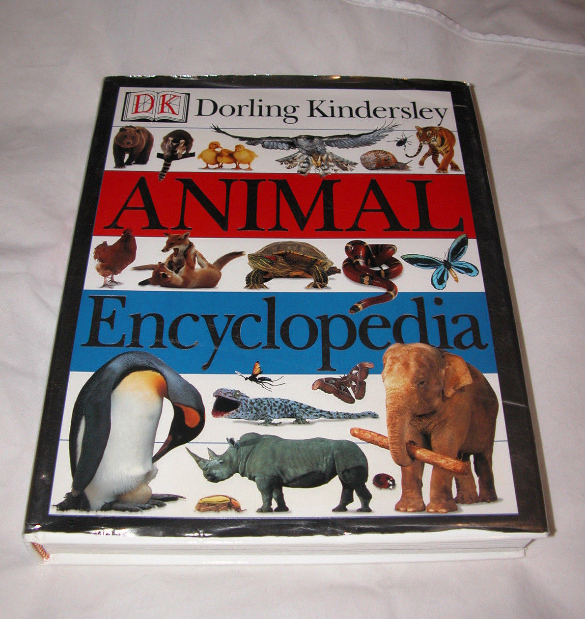 Primary image for Animal Encyclopedia Barbara Taylor & Jayne Parsons 2000 Hardcover Free Ship USA