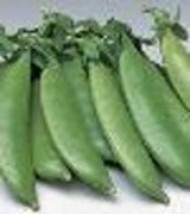 Pea - Sugar Sprint PVP - Non-Hybrid - Non-GMO - St. Clare Heirloom Seeds - $1.99