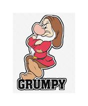 Grumpy Snow Whites 7 Dwarfs Family Tshirts Disney World Iron On Transfer... - $3.95